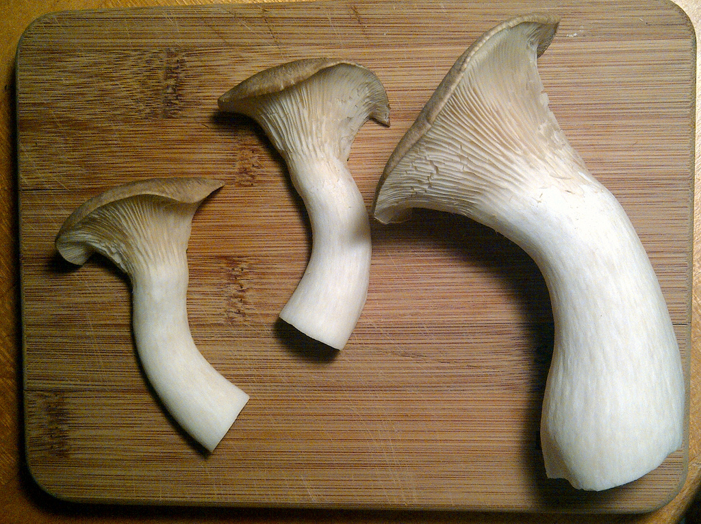 For shopping reference, these are some real King Oyster mushrooms.  Yum! Image from